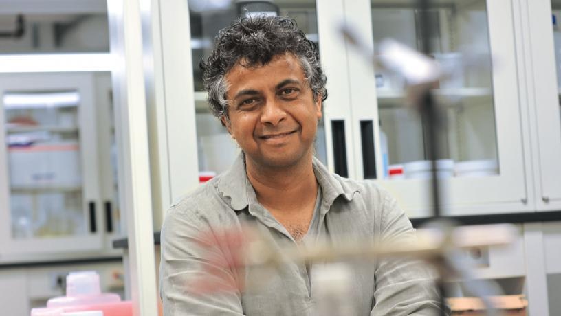 Portrait of Prof. Sanat Kumar.